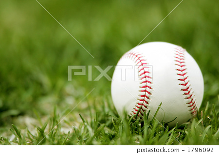 소년 야구, 구기, 구기종목 1796092
