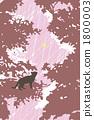 animal, animals, cat 1800003