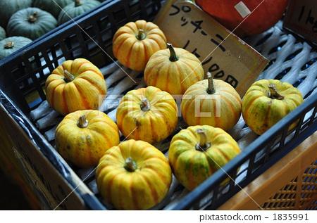 pumpkin, food, foods 1835991