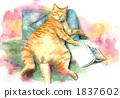 watercolour, watercolors, pet 1837602