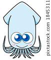 魷魚 1845311