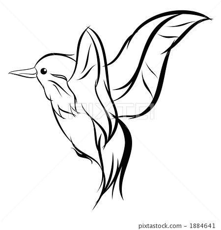 翠鸟(画线) 1884641