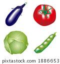蔬菜 1886653