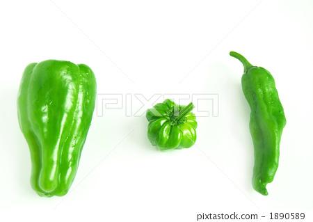 green pepper 1890589