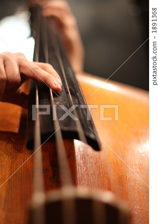 contrabass, wood bass, stringed instrument 1891368