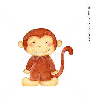 monkey 1921985