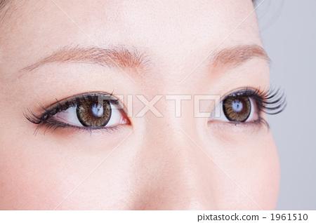 Young female, eyelash, eye-lash 1961510
