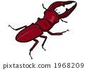 昆蟲_鋸棕櫚_101115 1968209