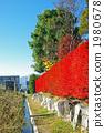 Reddened hedge of Doudendzi 1980678