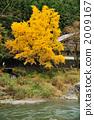 御岳谷 峡谷 山谷 2009167