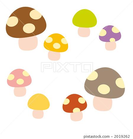 mushroom 2019262