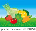 蔬菜 2029058