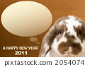 2011 Rop Year Rabbit Brown 2054074