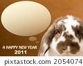 2011 롭 이어 토끼 갈색 2054074