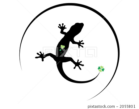 Lizard 6 2055801