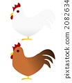 cock, rooster, livestock 2082634