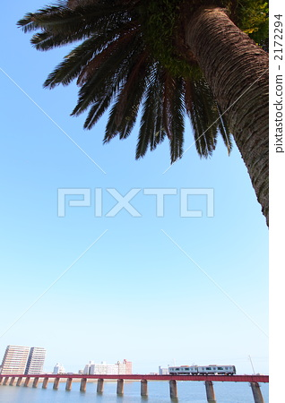 Palm trees and iron bridges and local lines 2172294