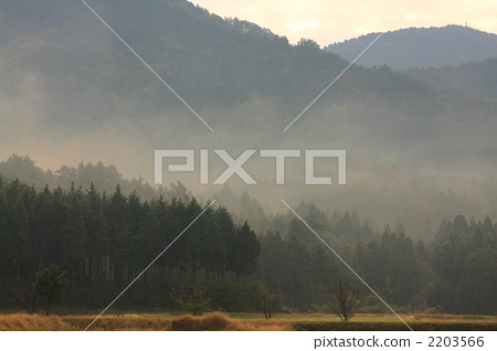 Mountain of Nagahama wrapped in morning mist 2203566