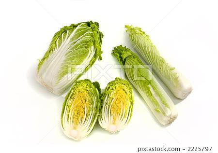 napa cabbage, half, chinese cabbage 2225797