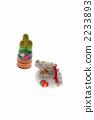 띠 용띠 용 소나무 장식 (흰색 배경) 세로 2233893