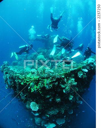 일본군 난파선 다이빙 후지 천 원 타이타닉 촬영지 침잠 렉 다이빙 추크 제도 2237250