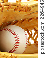 baseball equipment supply 2264945