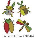 แมลงฤดูร้อน 2283444