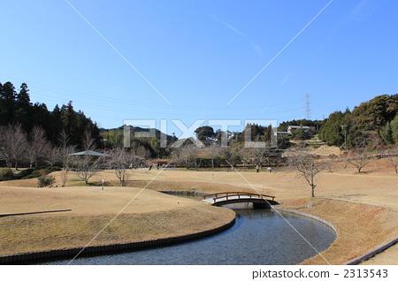 사가라 유전의 마을 공원 2313543