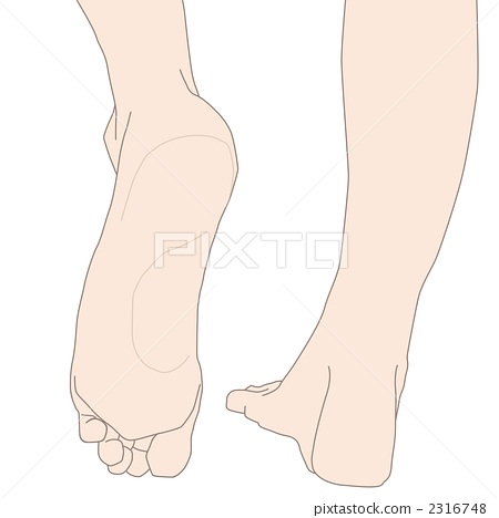 the sole of the foot, body parts, feet - Stock Illustration [2316748 ...