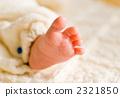 Baby's foot 2321850