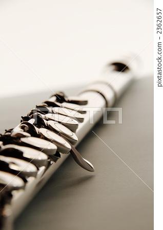 flute 2362657