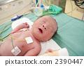 剛出生的嬰兒 2390447