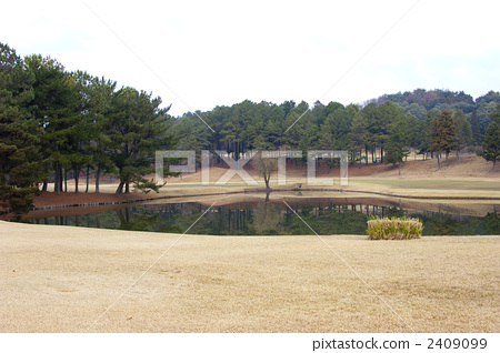 golf 2409099