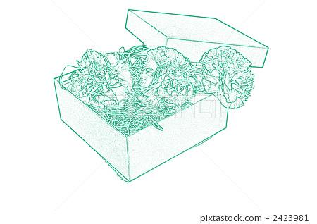 carnation, carnations, a box 2423981