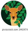 一隻鹿 2442479