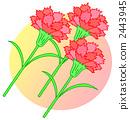 Carnation. 3 2443945