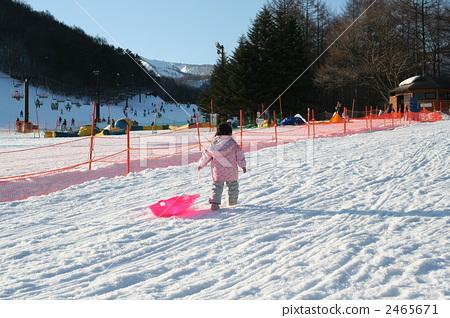 Sled sledding girl 2465671