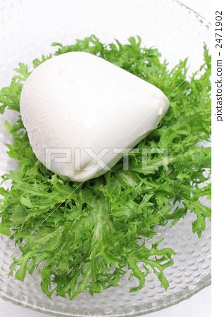 Mozzarella cheese 2471902