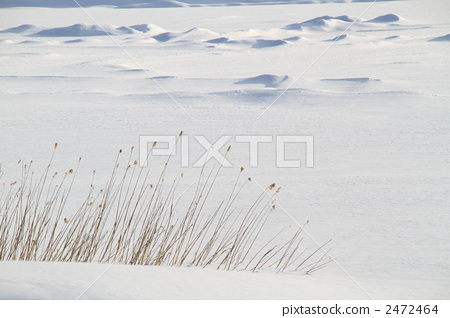 Winter Kirigamine Plateau 2472464