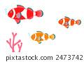 銀蓮花魚 2473742