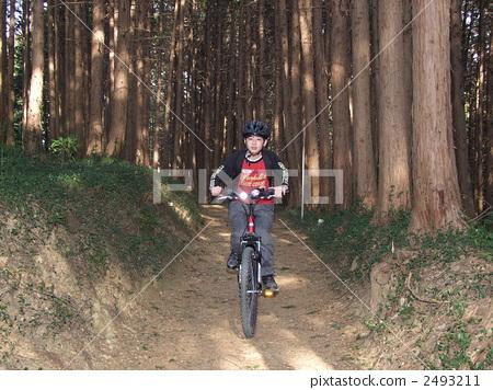 cycling 2493211