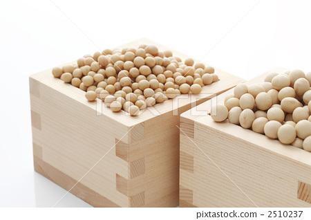 Small grain soybean and medium grain soybean for natto 2510237