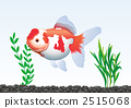 Aquarium 2 2515068