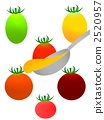 flavor, enhancer, seasoning 2520957