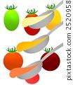 flavor, enhancer, seasoning 2520958