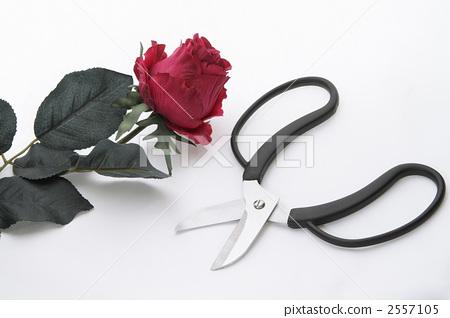 Rose artificial flowers & gardening scissors 1 2557105