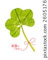 5 개의 잎 클로버 2605176