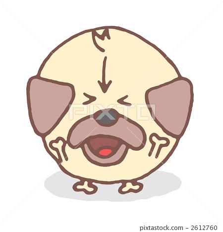 toy dog, small-breed dog, pug 2612760