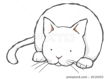 Cat lying down (white cat) 2616005