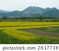 Spring in Shinshu - Kijimahei Distant view 2617738